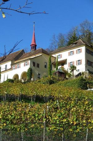 Tour of Altdorf Monastery