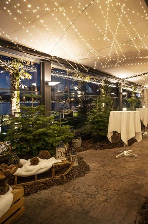 Winter forest at Seehotel Hermitage