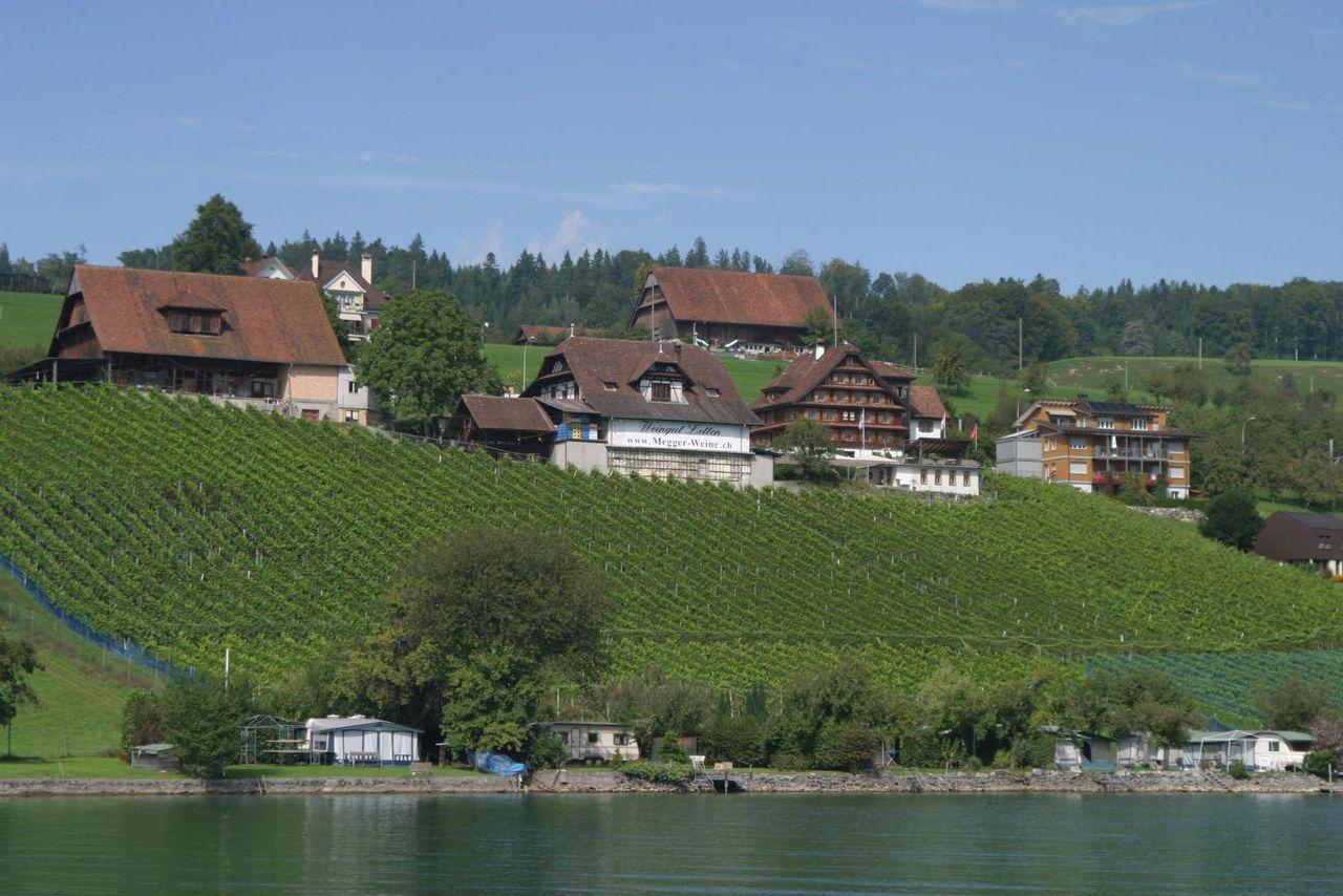 Letten wine estate
