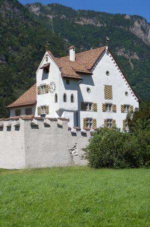 A Pro Castle
