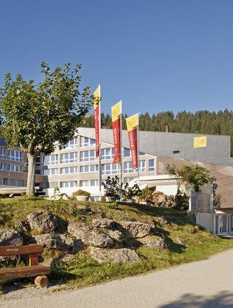 Hotel Rigi Kaltbad***S