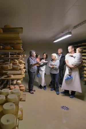 Käsen in der Gruppe